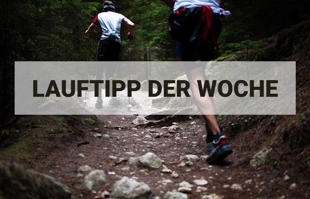Alexander Finsels Lauftipp für Fortgeschrittene