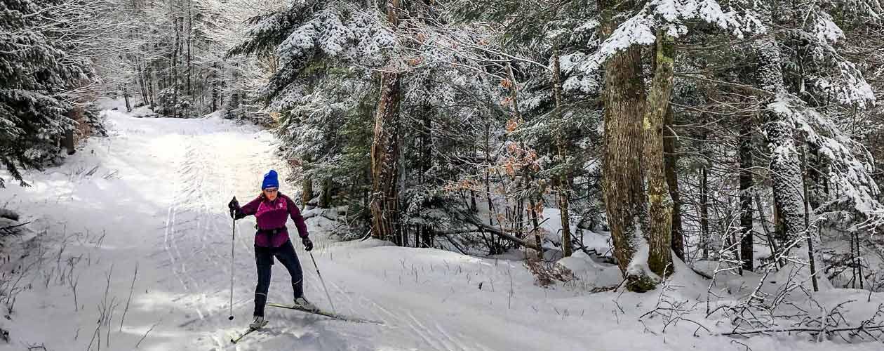 Langläuferin auf Langlaufski im Wald