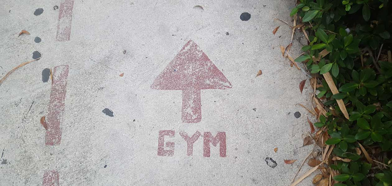 Fitness Online Shop GYM