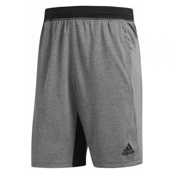 Herren Sporthose Tech Shorts